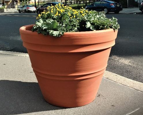Fall Flower Planting in the South Ward SID